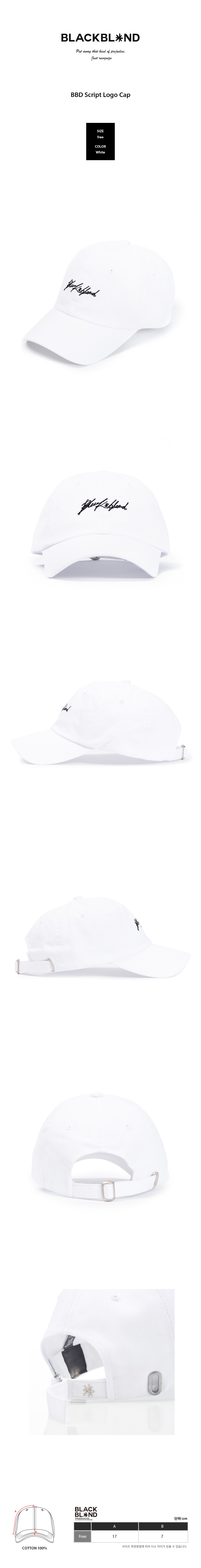 copy-1516010103-rough-logo-ball-cap-wh.jpg